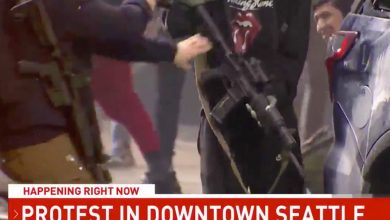 Photo of Safety guard bursts into motion after protester 'grabs rifle from police automobile'