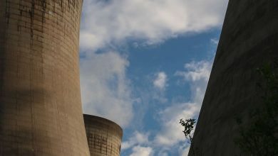 Photo of ClientEarth appeals Excessive Court docket judgment over Drax fuel plant approval
