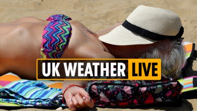 Photo of 11pm UK climate forecast – September could possibly be hottest on file, say bookies with Brits to delight in 25C subsequent week – LIVE