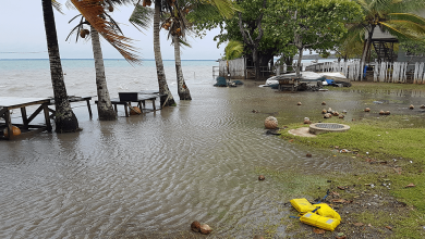 Photo of Torres Strait Islander group submits response in historic local weather case