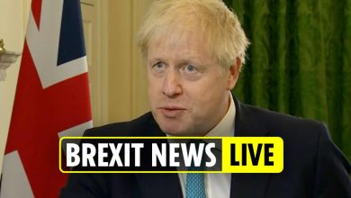 Photo of Brexit information newest – Boris given ONE DAY deadline to reply to EU lawsuit as crunch commerce deal talks enter last stage