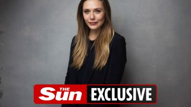 Photo of Being sis to Olsen twins was insane…I wished a new title, says WandaVision star Elizabeth Olsen