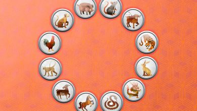 Photo of Each day Chinese language Zodiac Sunday January 17: What your horoscope signal means for you at this time