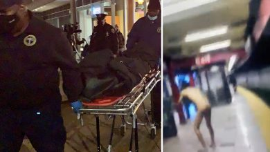 Photo of Bare man 'ELECTROCUTES himself' after shoving NYC subway passenger onto tracks in wild assault