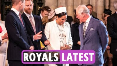 Photo of Royal Household newest information – Prince Charles 'gave substantial sum' to Harry & Meghan regardless of 'lower off' claims to Oprah